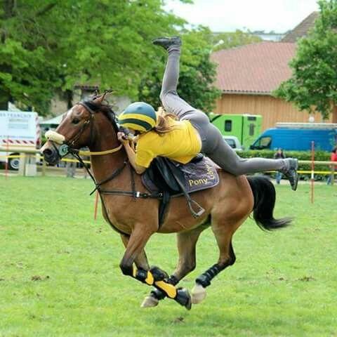 A love bewteen a pony-gamer and an fantastique horde #Winner