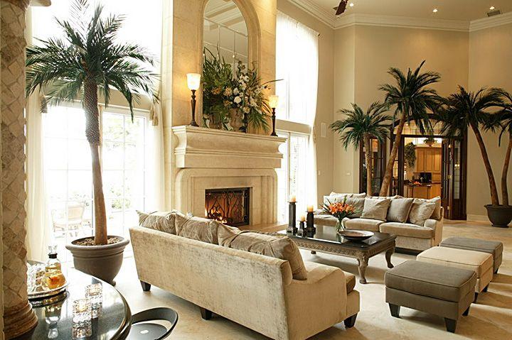 Wohnzimmer Palme ~ Living room plant ideas home design wohnzimmer pflanzen und