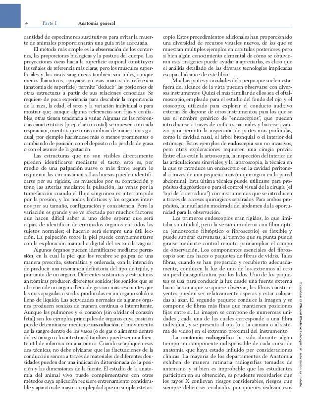 Lujo Tarjetas De Memoria Flash De Anatomía Veterinaria Patrón ...
