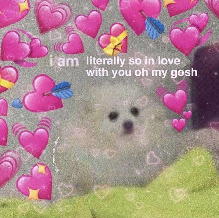 Pin By Killajemima On Love 3 Cute Love Memes Love Memes Hug Meme