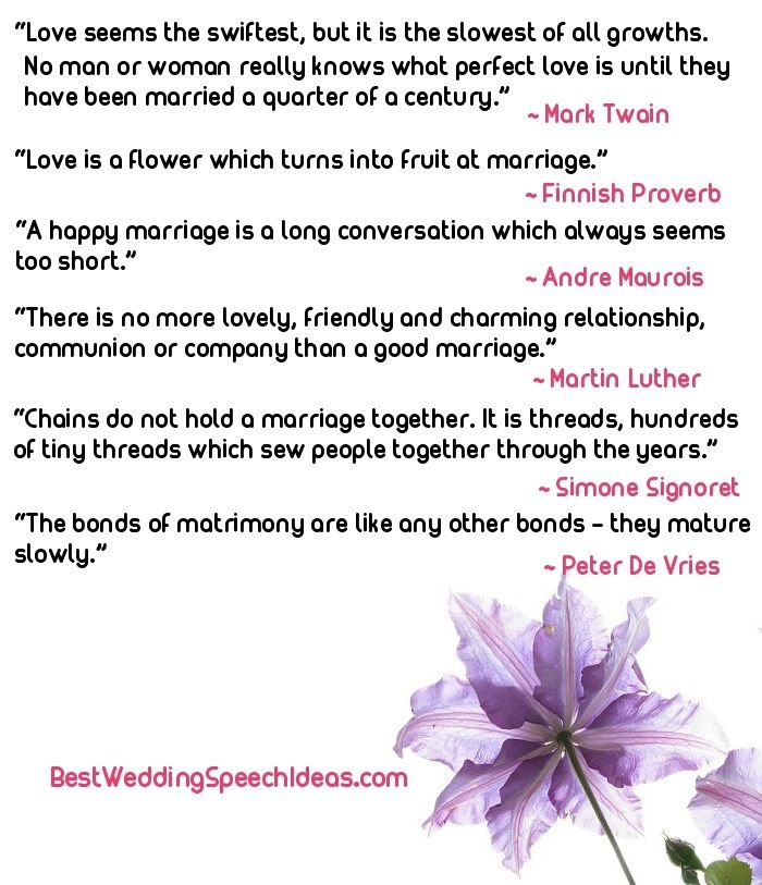 Best Father Of The Bride Speech Examples Jokes And Tips  Wedding