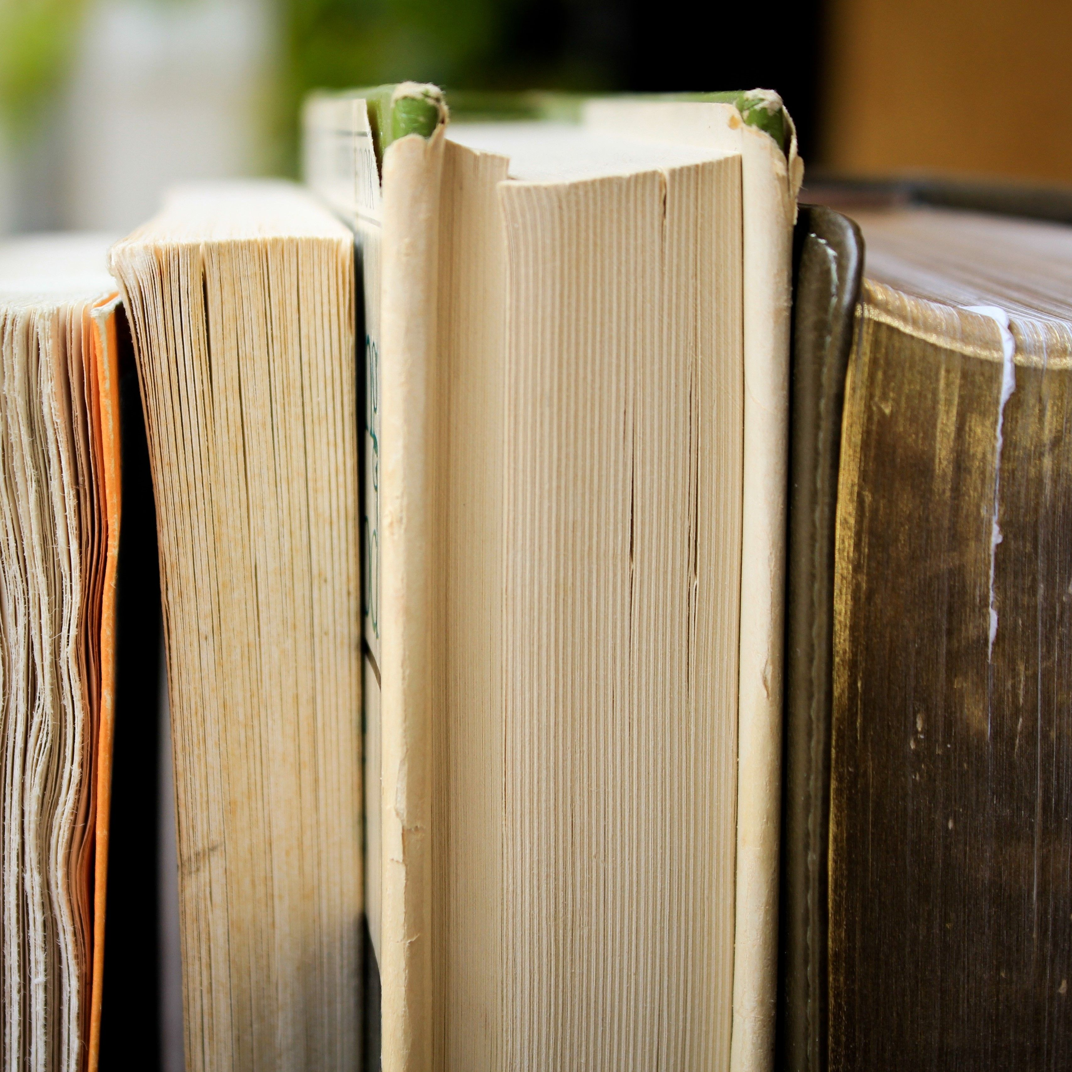 8 Affirming Books That Helped Me Love Life More