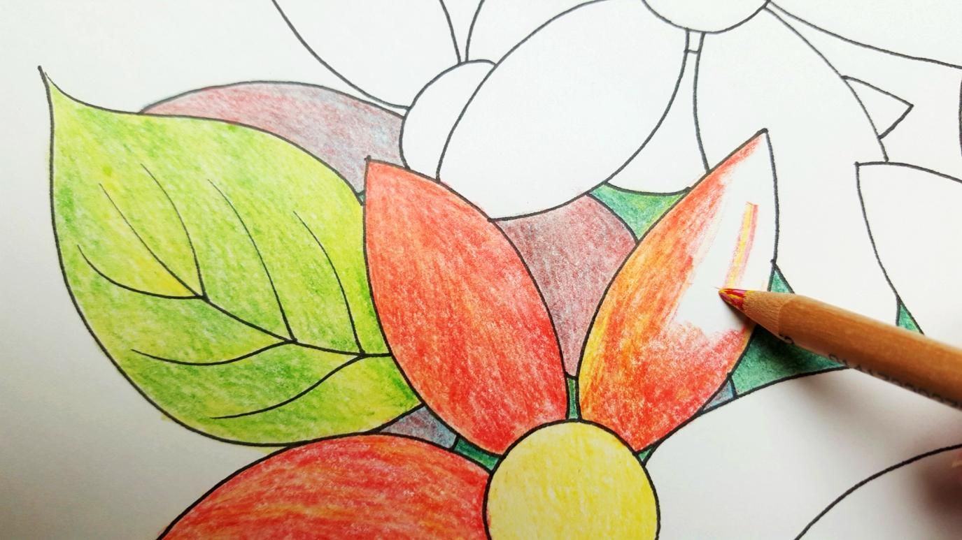6 Creative Coloring Ideas for Adult Coloring Books | Creativity ...