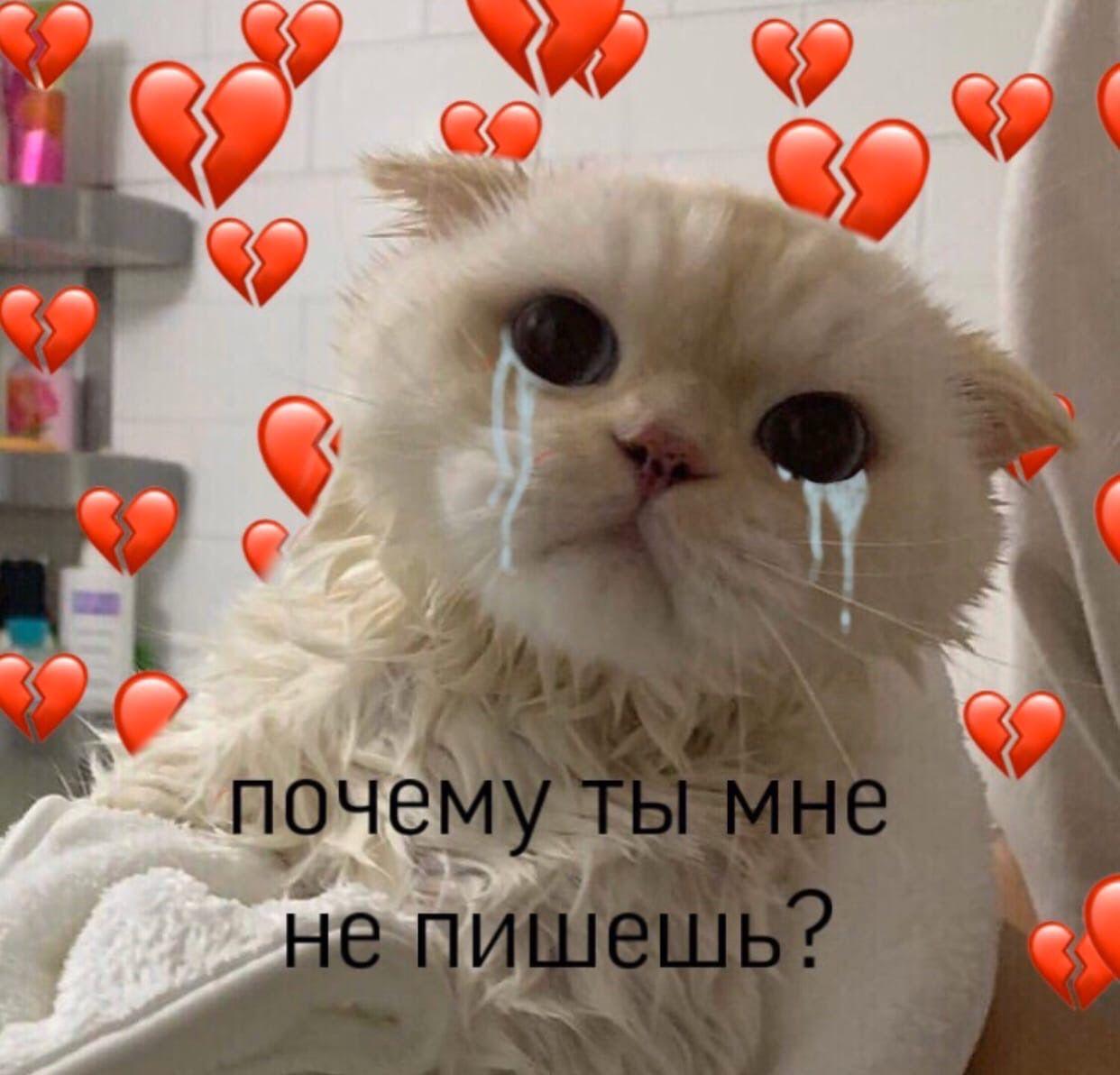 Пин от пользователя Альбина Сиряева на доске вп в 2020 г ...