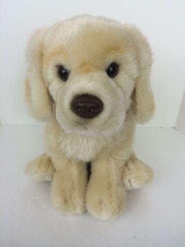 Rare Webkinz Signature Golden Retriever Plush Dog Wks1006 Ganz No