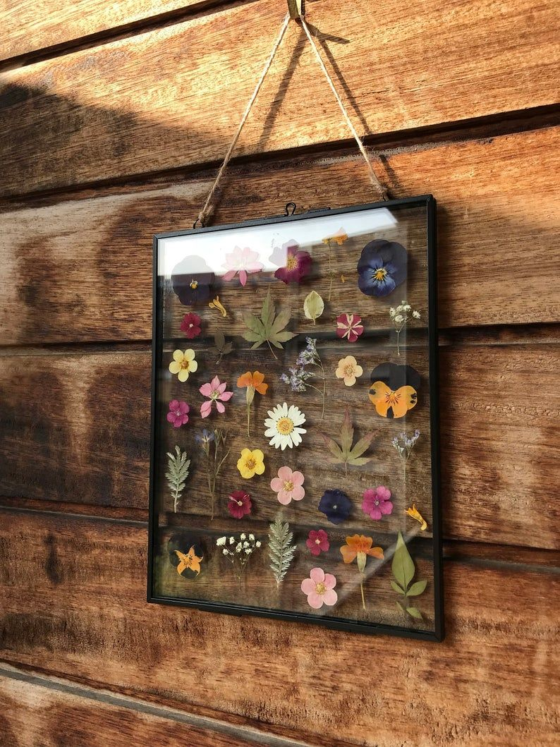 Pressed flower frame herbarium Flower frame, Arts