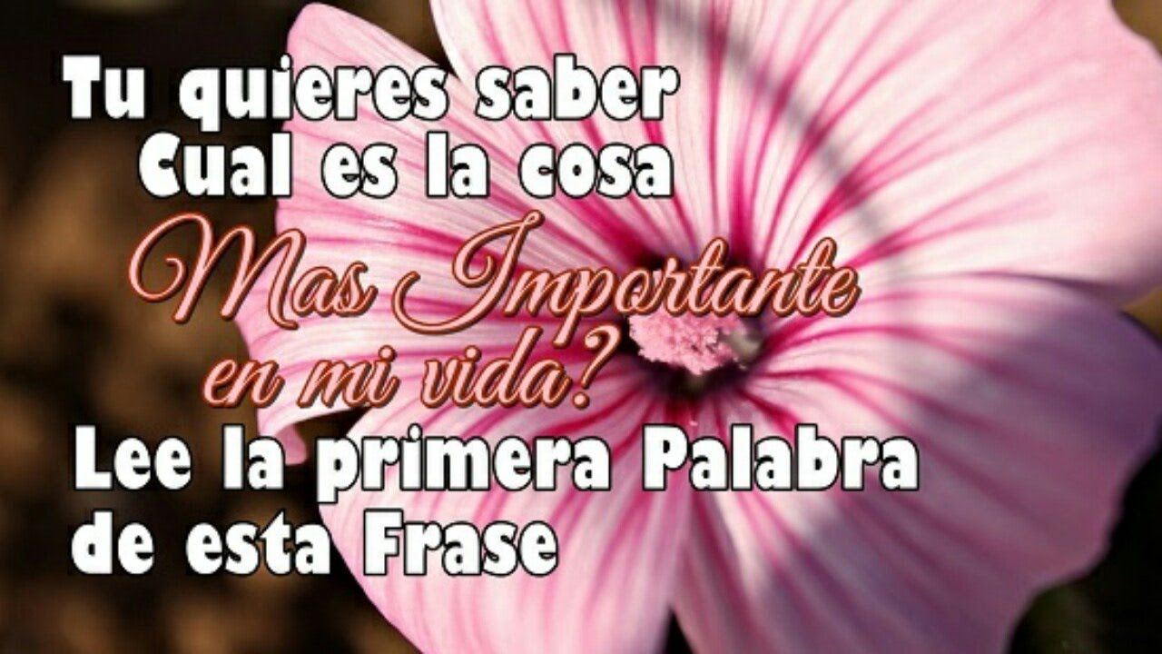 Imagenes De Amor Con Frases De Amor ♡ Video Para Dedicar ♡ Hermosas Frases♡ BELLO AMOR Pinterest