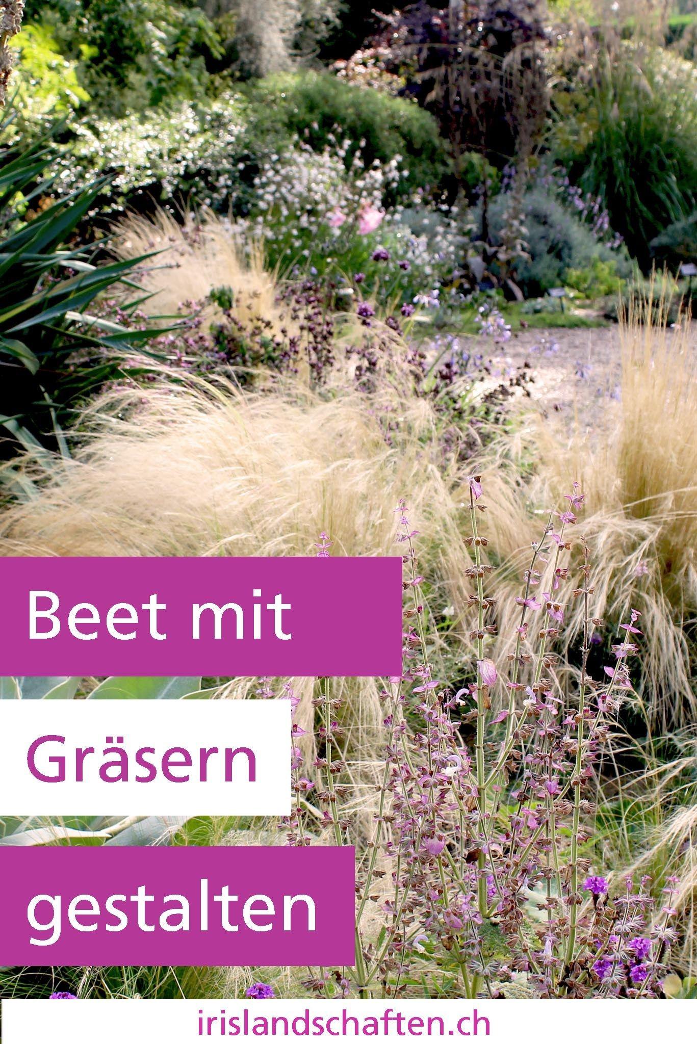 beet mit gräsern gestalten: meine 12 lieblinge | gemeinsam im garten