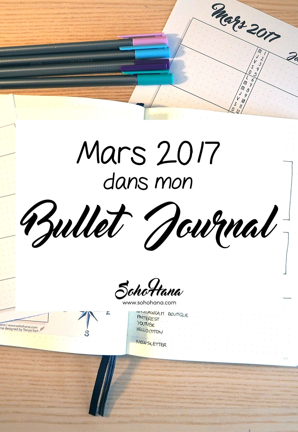 mars 2017 dans mon bullet journal bullet journal communaut fr bullet journal 2017 bullet. Black Bedroom Furniture Sets. Home Design Ideas