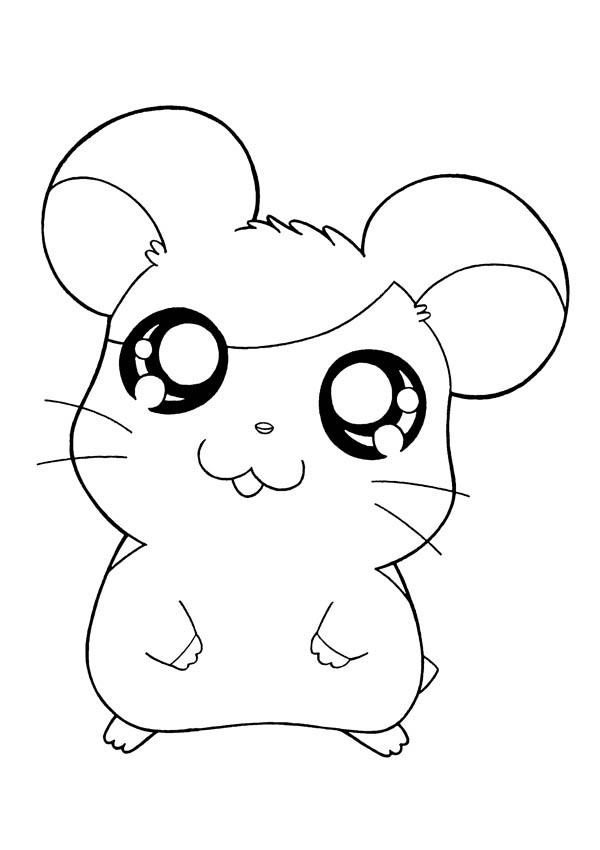 Picture Of Hamtaro Coloring Pages Bulk Color Dibujos Animados Bonitos Dibujos Kawaii Dibujos Para Colorear Adultos