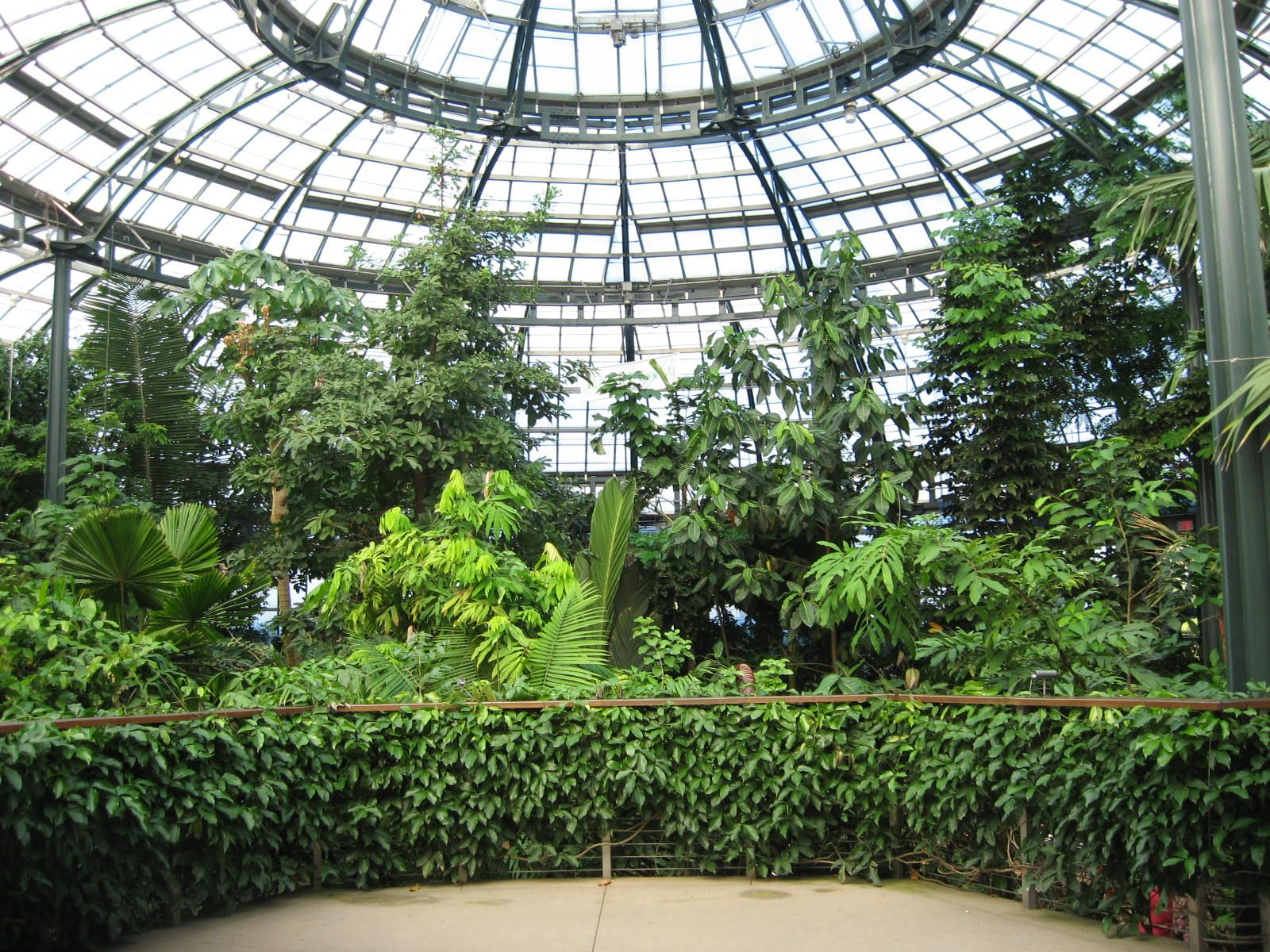 4465ec8c8fed51462b68cc6f79ab9145 - Botanical Gardens Los Angeles Huntington Library