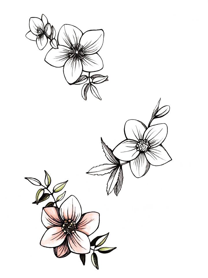 Nur Tätowierungsskizzen / Tätowierungs- / Skizzentätowierung   #flowertattoo -  Nur Tätowierungsskizzen / Tätowierungs- / Skizzentätowierung   #flowertattoo  - #flowertattoo #Nur #skizzentatowierung #tatowierungs #tatowierungsskizzen #tattooarm #tattooideasbig #tattooideasinmemoryof #tattoosketches