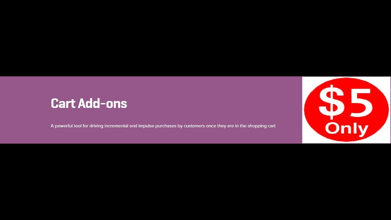 Woocommerce Cart Add Ons 1 5 13 Extension Youtube Ads Woocommerce Extensions