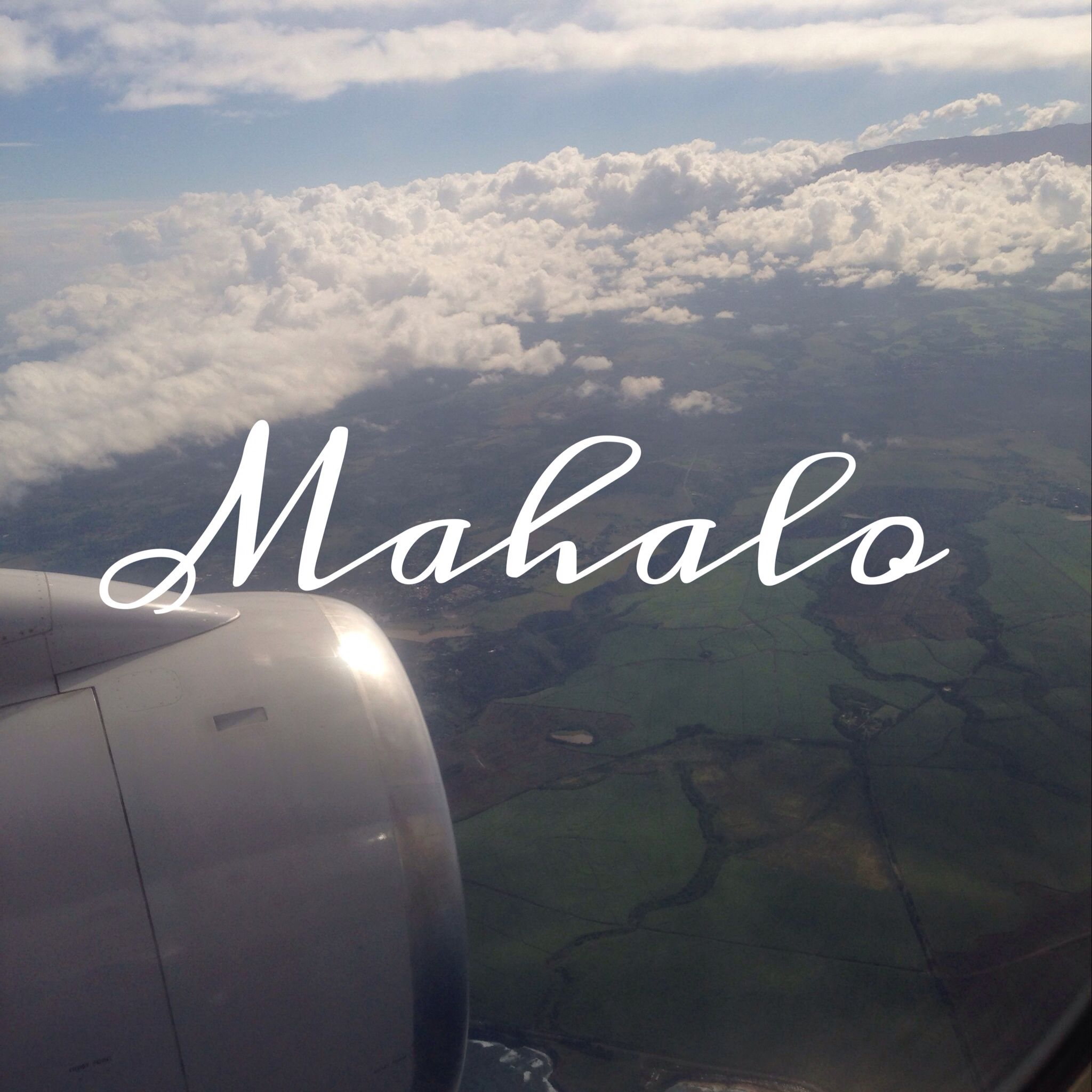 Mahalo maui maui neon signs hawaii