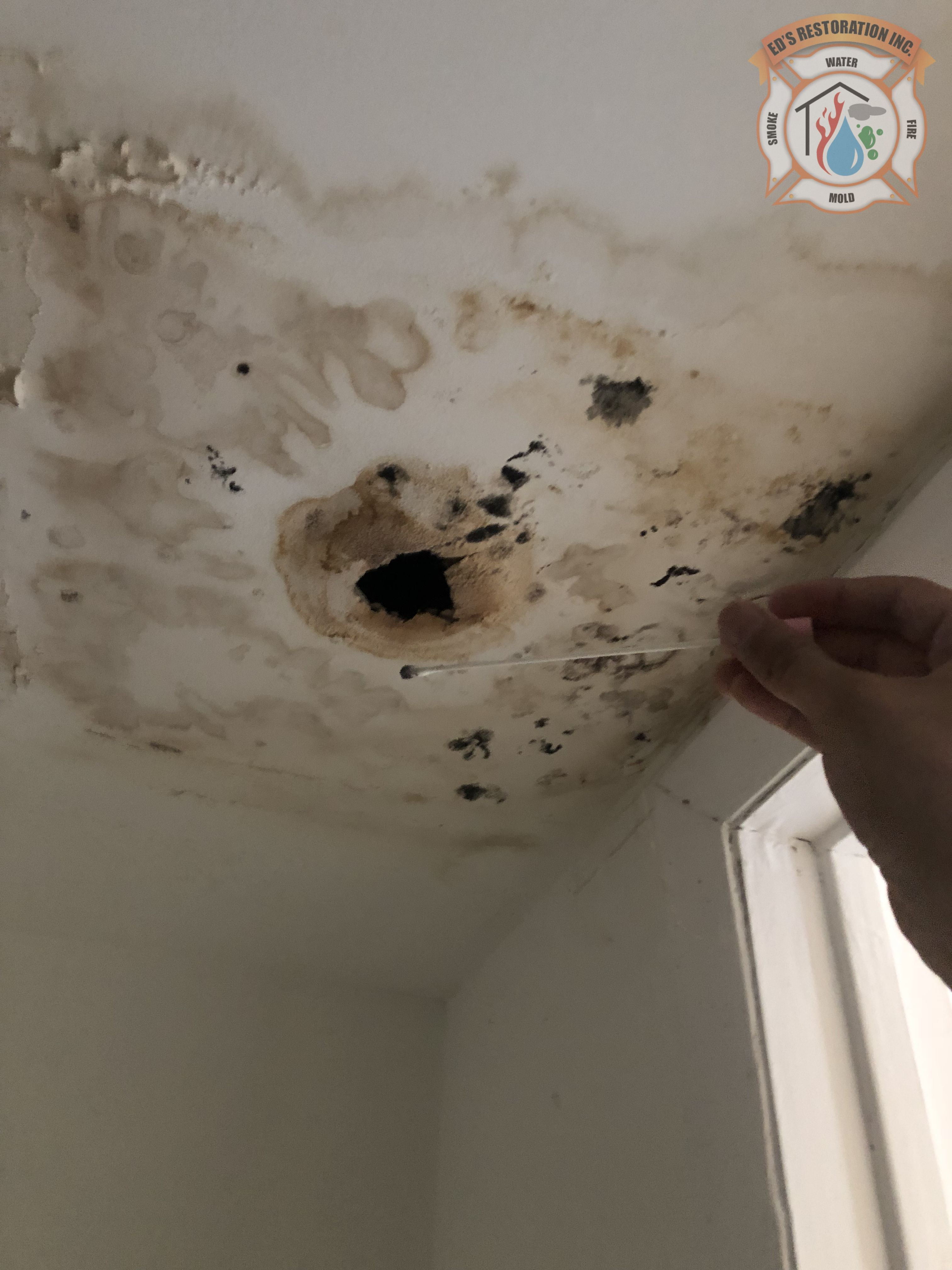 Another Case Of Water Intrusion Leading To Mold Damage In A Property This Particular Case Is An Apartment Un Bathroom Ceiling Mold On Bathroom Ceiling Ceiling