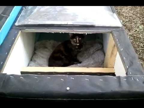 Winter Cat Shelter House Feral Cat Day Cat Shelter Cat Shelters For Winter Feral Cats