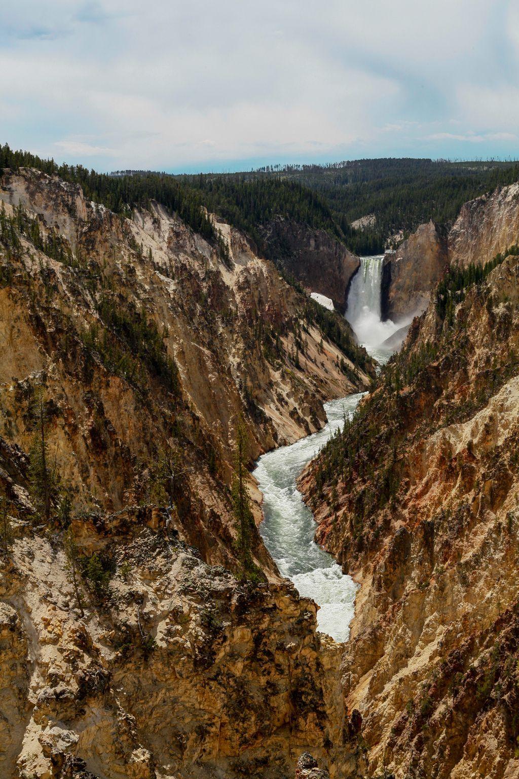 Yellowstone Natl Park Lower Falls [OC][1024x1536