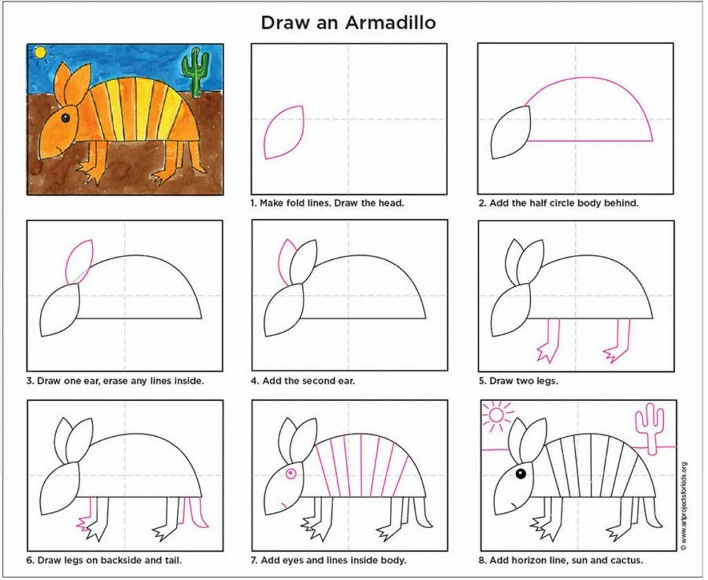 Draw an Armadillo Art projects, Art lessons elementary