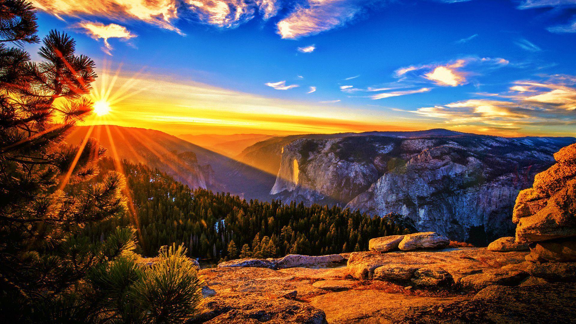 sun set scene | best wallpapers on your phone | pinterest | wallpaper