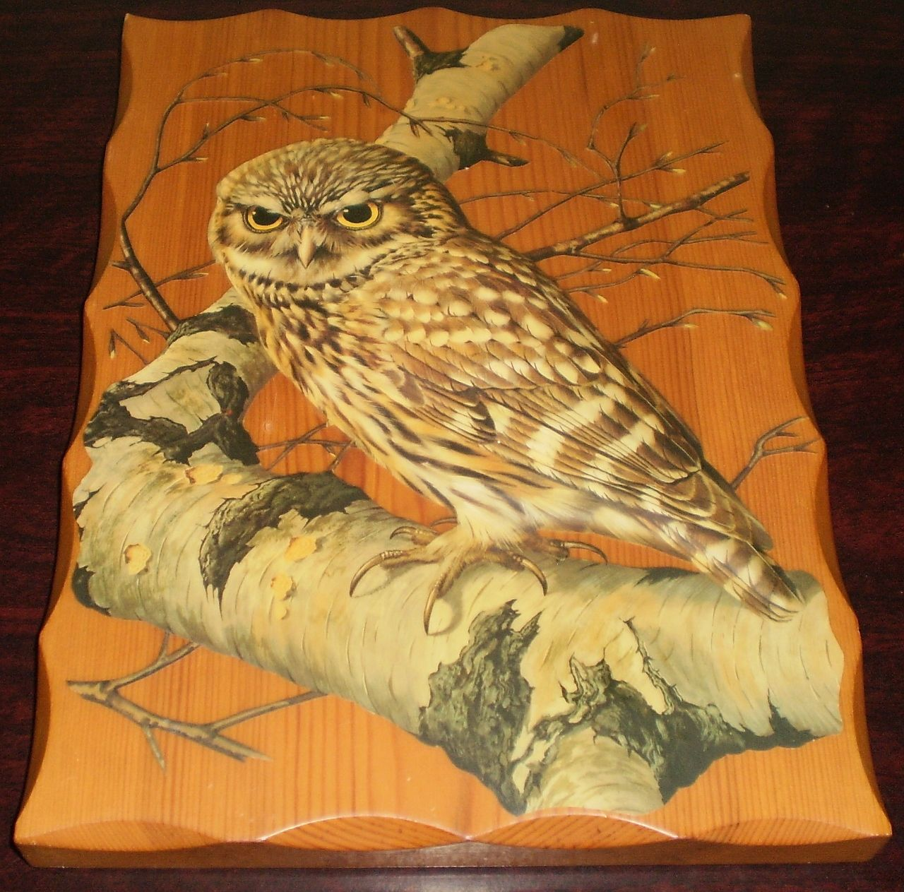 Owl Decoupage Art on a piece of Pine wood Wall Hanging by Deirdre ...