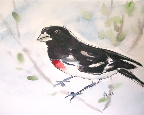Let S Paint The Rose Breasted Grosbeak With Images Painting