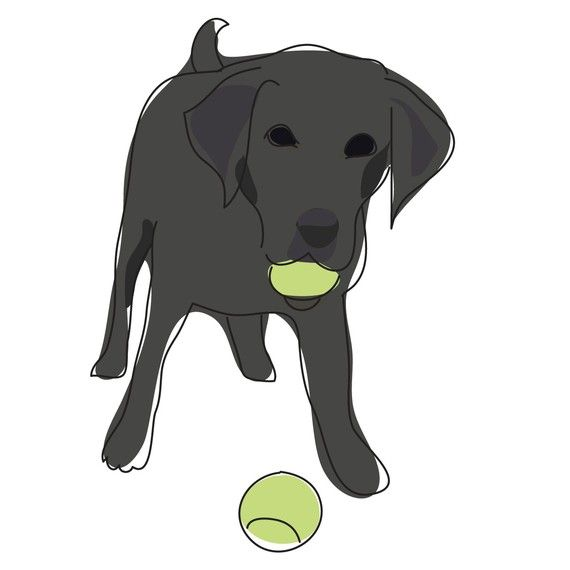 My Lab Is Definitely Addicted To Tennis Balls Tennis Funny Tennis Ball Quote Tennis Balls