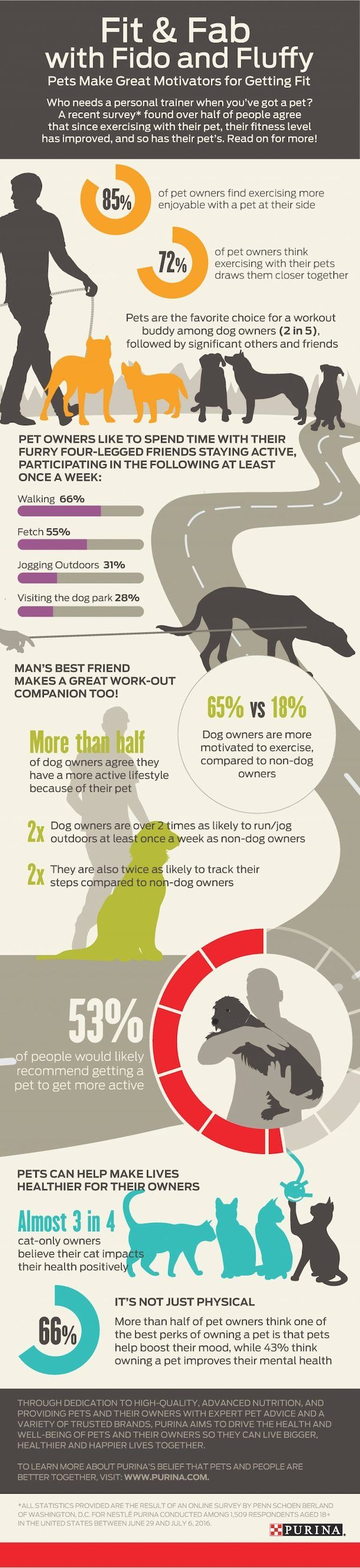 Why A Dog Could Be Your Best Exercise Partner Dog