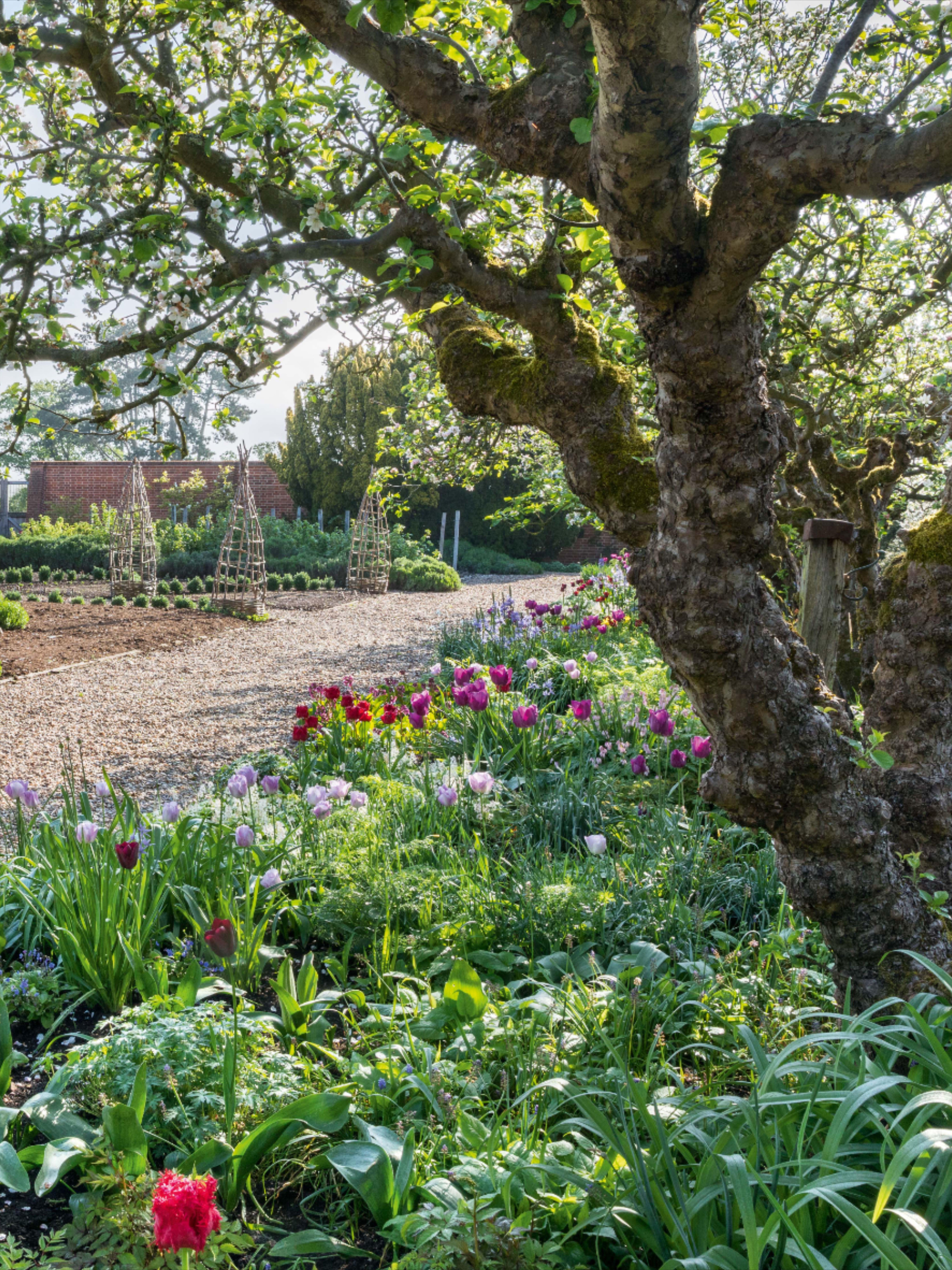 An Oxfordshire garden built on Tom Stuart-Smith's original ...