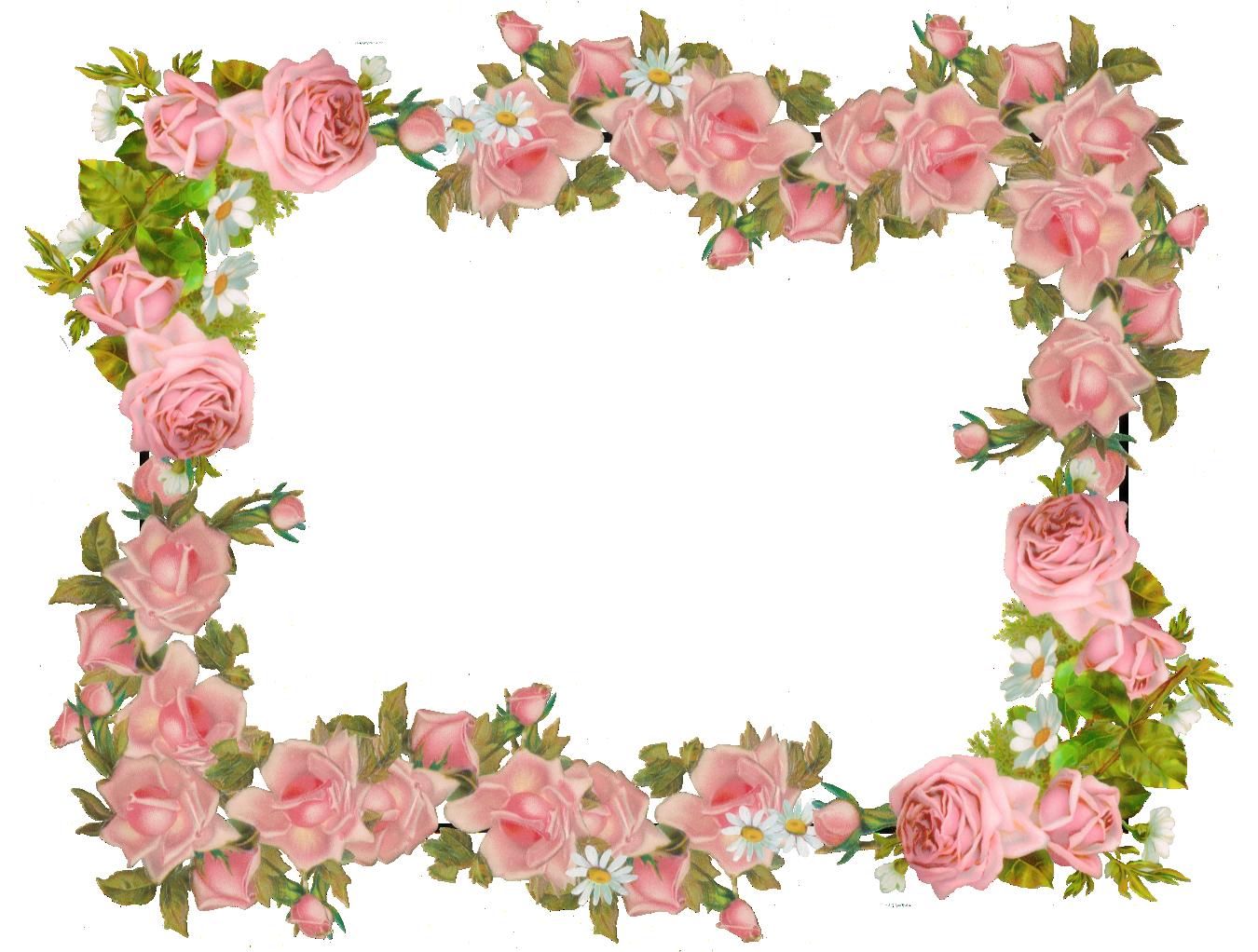 Free digital vintage rose frame and scrapbooking paper - Rosenrahmen ...