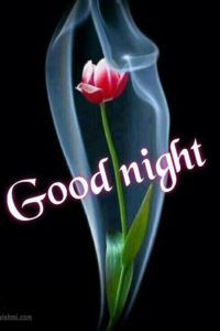 Good night images download for whatsapp pinterest good night images download for whatsapp voltagebd Choice Image