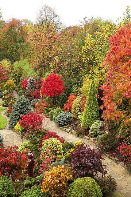 Path through the autumn colours #autumncolours