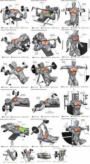 Top 10 Deltoid Workouts: Make Your Shoulders STRONGER and BIGGER #fitness #exercises
