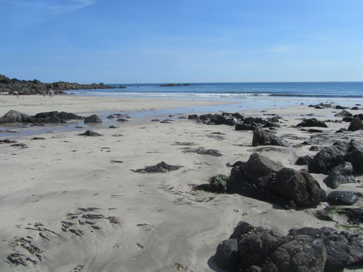 7 Amazing Reasons to Visit the Lizard in Cornwall Family