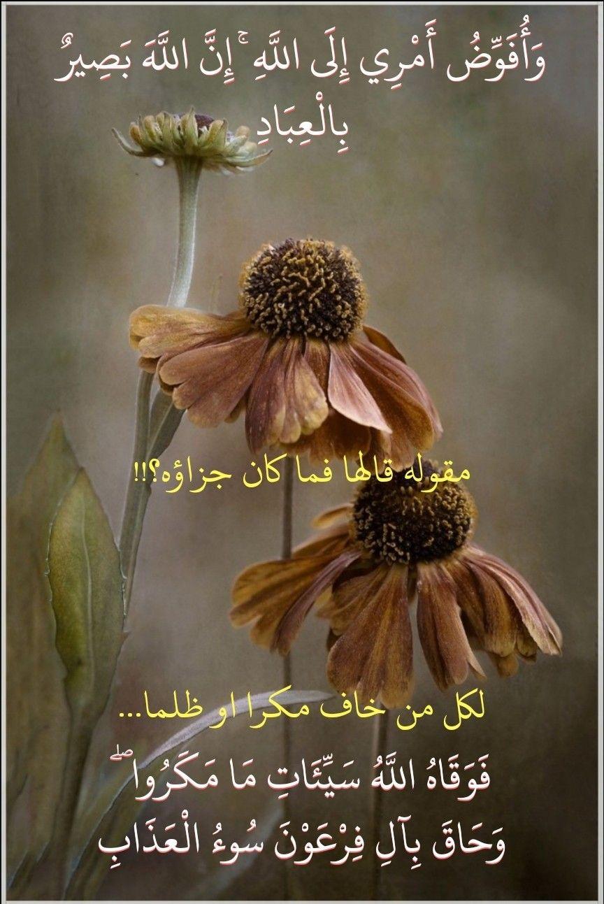 قرآن كريم آية وأفوض أمري الى الله ان الله بصير بالعباد Islamic Quotes Flowers Plants