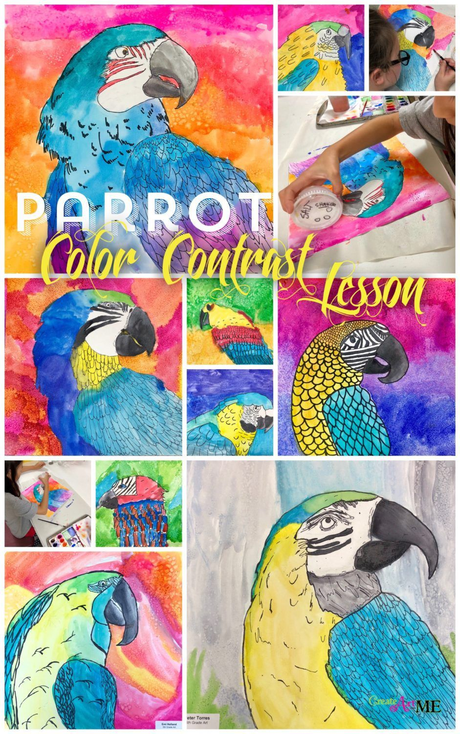 Parrot Color Contrast Watercolor Lesson Watercolor Art Lessons