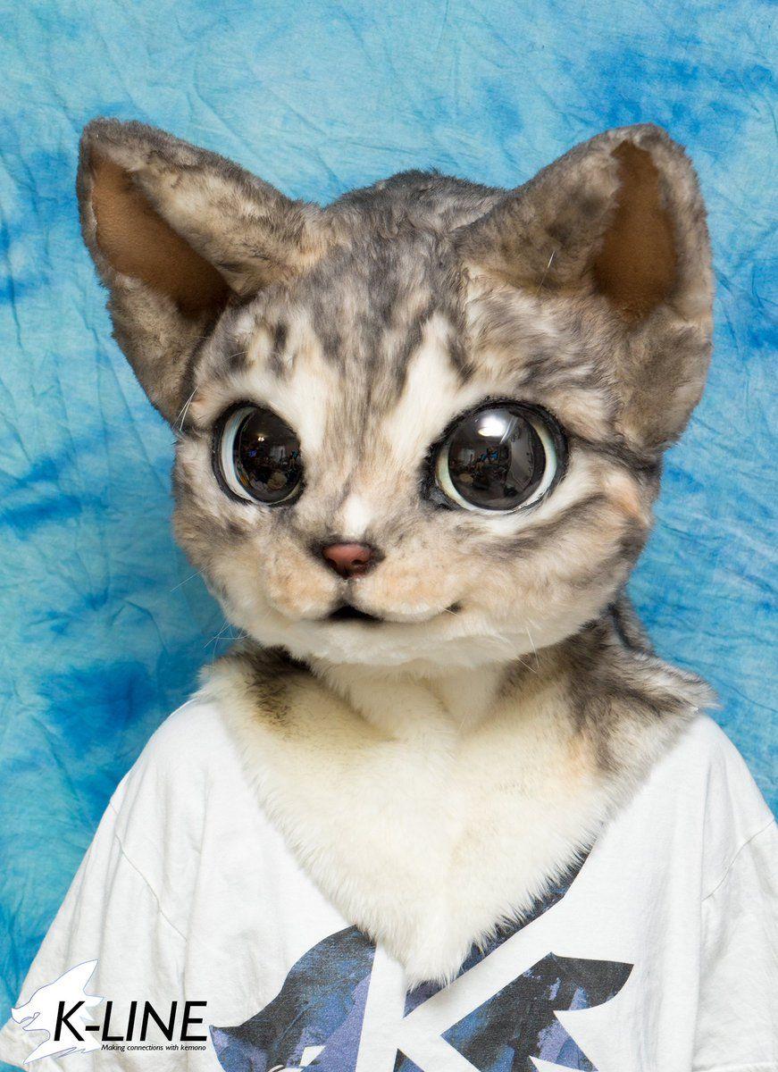 Twitter Cat Fursuit Anthro Furry Fursuit Furry