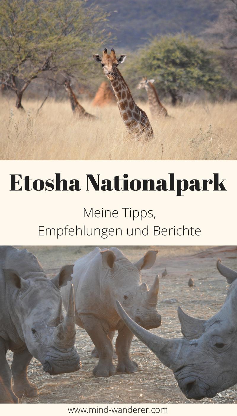 Auf Safari im Etosha Nationalpark   mind