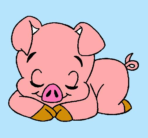 cerdo tierno dibujo  Buscar con Google  DYI  Pinterest