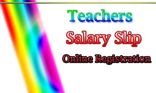 Salary Slips of Teachers online Registration Education - payslip free download