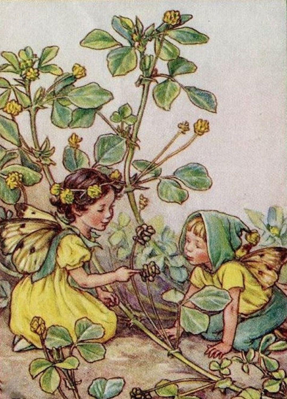 cross stitch patterns flower fairies