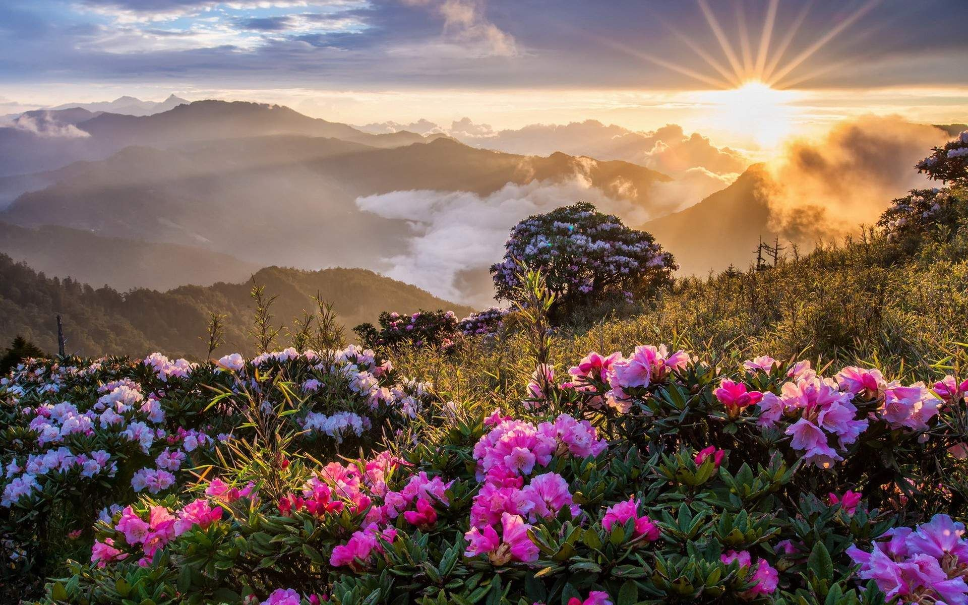 Mountain Sunrise Beautiful Landscape Wallpaper For Desktop In High Resolution Free Download Beautiful Landscape Wallpaper Beautiful Landscapes Beautiful Nature