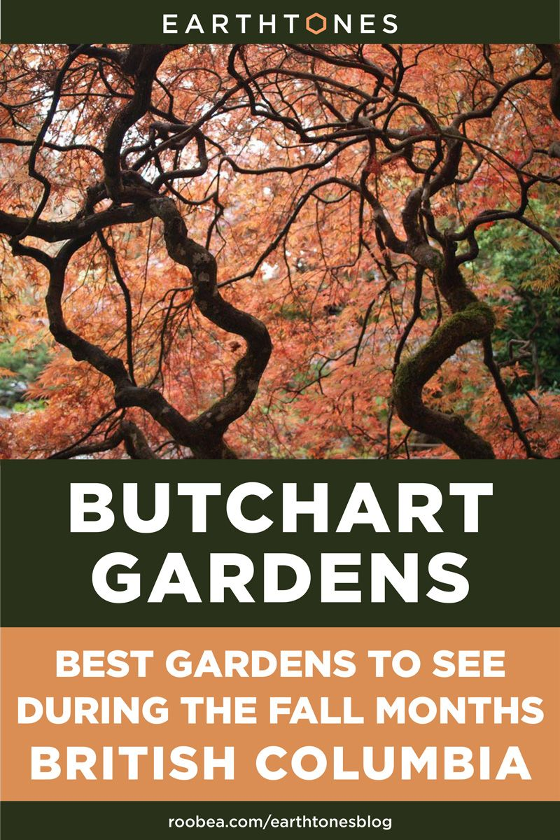446e8bfeb8fa37756cc1cbdc634f4cf0 - Butchart Gardens Best Month To Visit