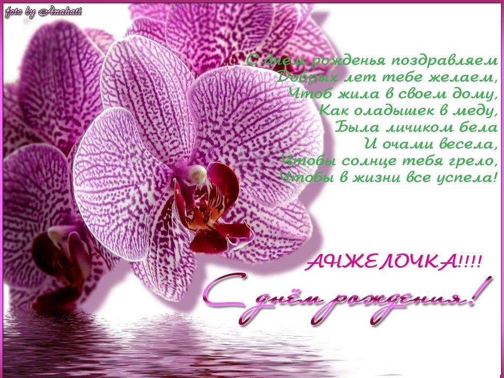 Картинка с днем рождения орхидеи картинки