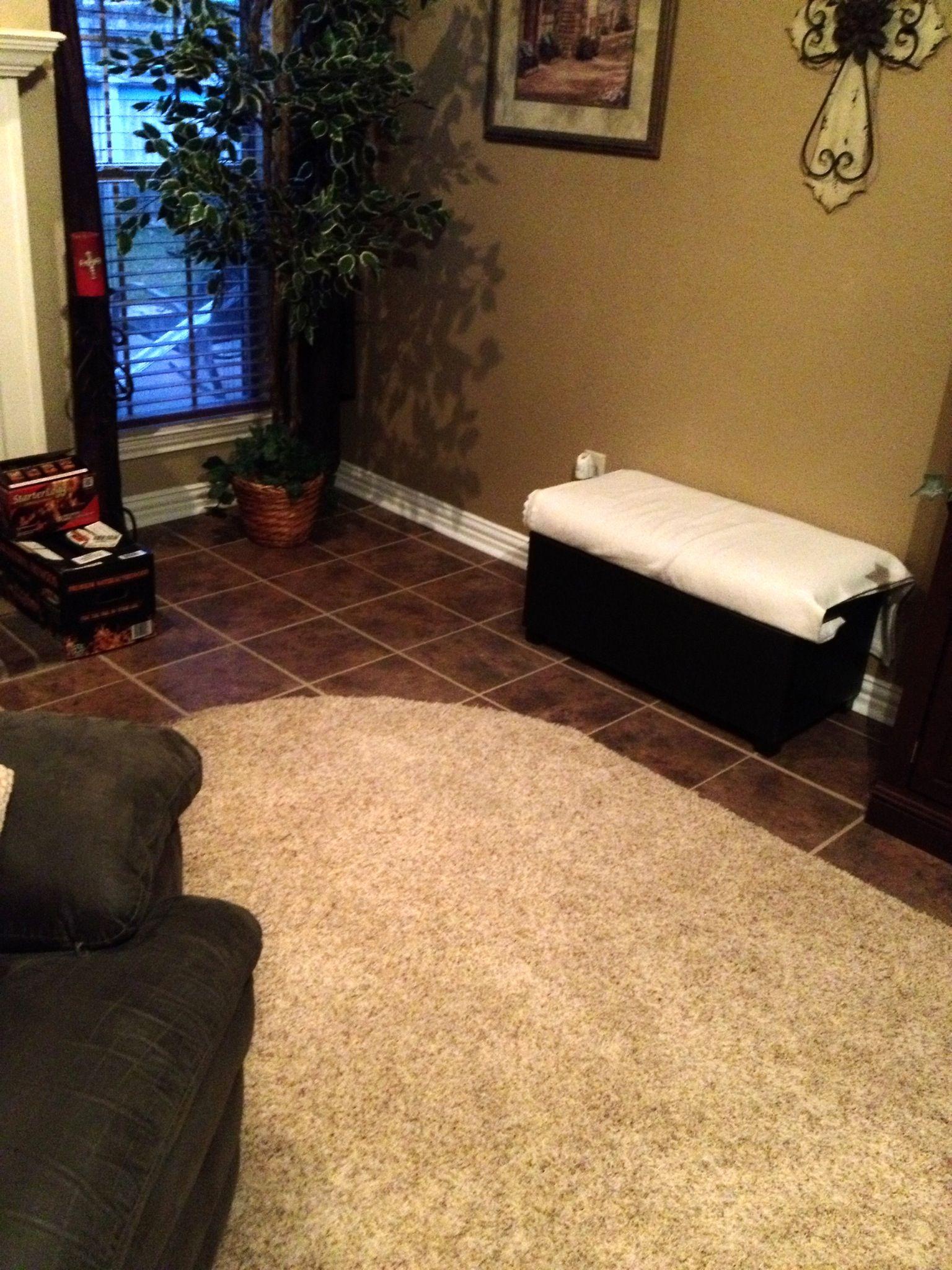 Living room carpet just had put in   Living room carpet ...