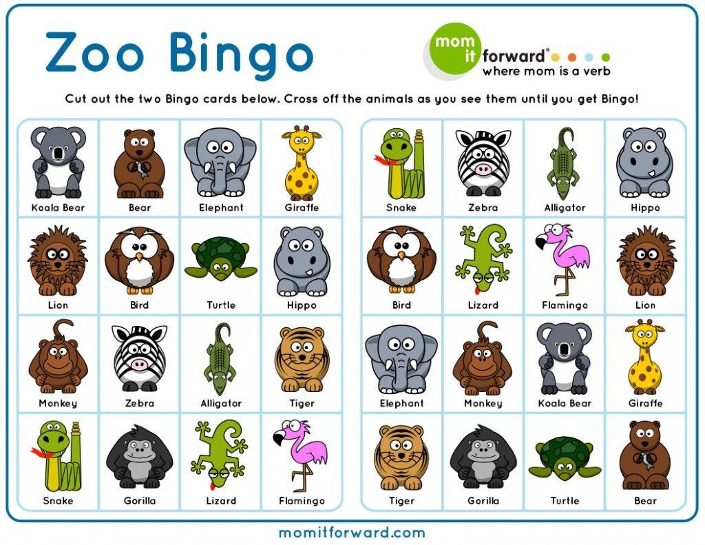 Best staycation ideas zoo activities zoo preschool
