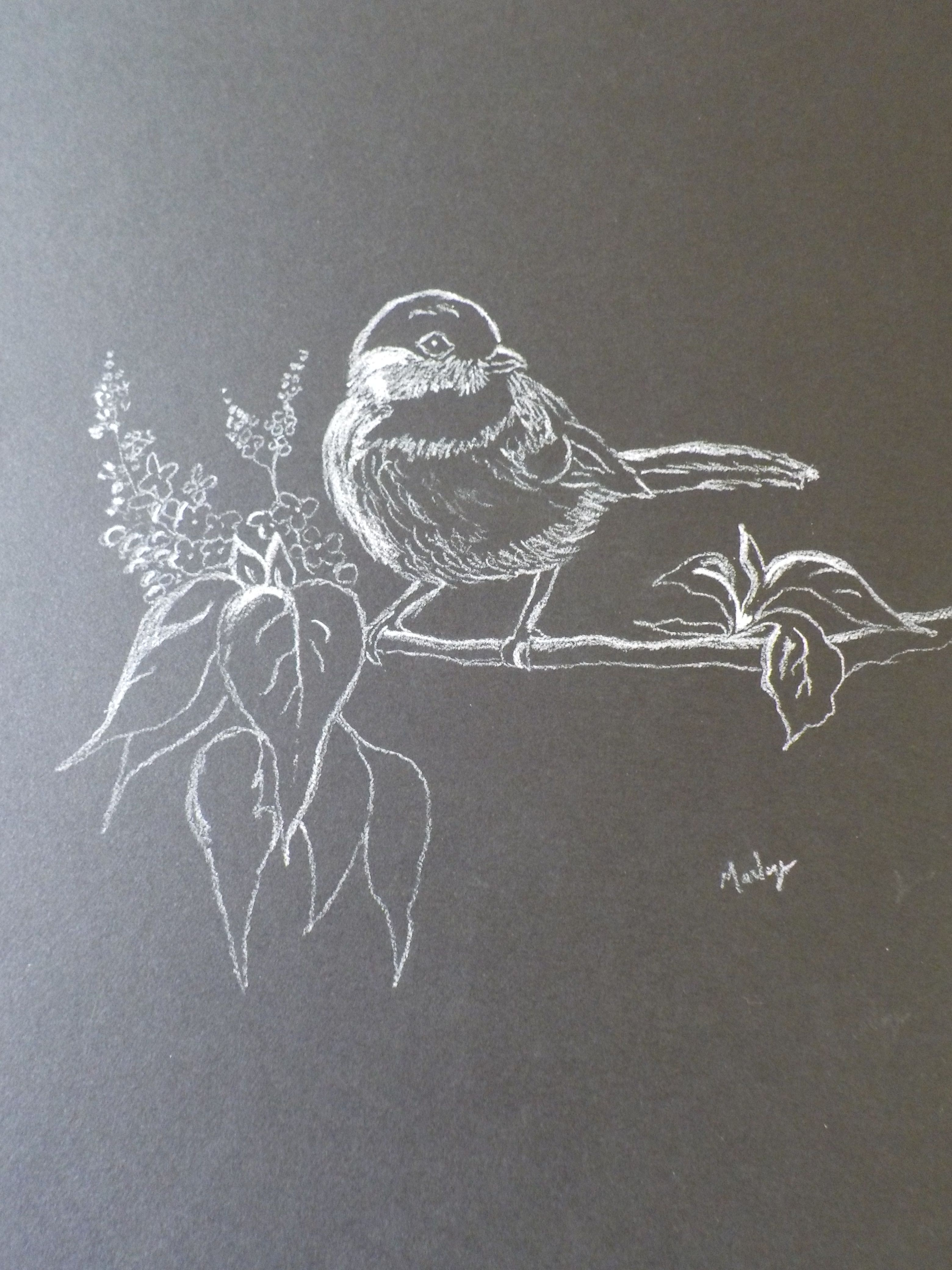 White Pencil On Black Paper Black Paper Drawing Chalk Drawings