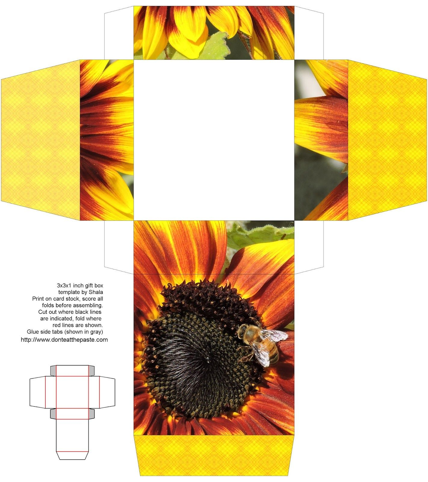 Printable sunflower and bee box  box cubique  Pinterest  Bee