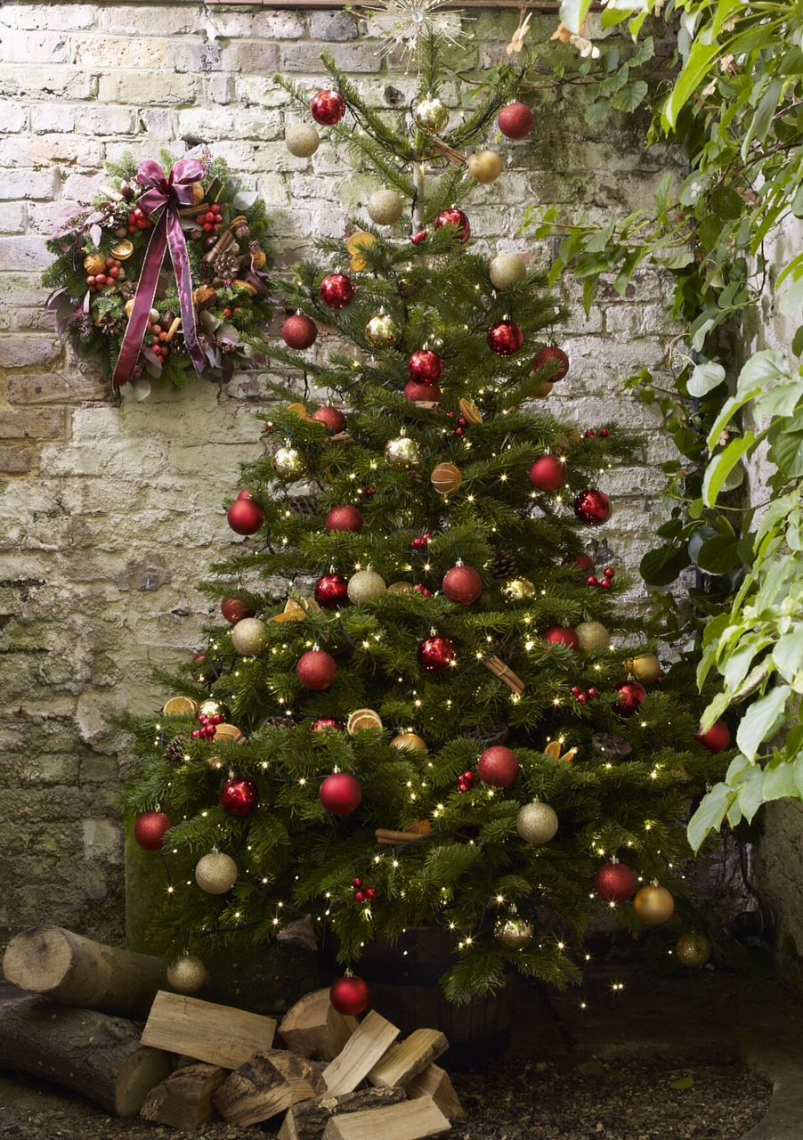 have you sorted out your Christmas tree yet ... we can install and decorate a tree up to 15ft for you