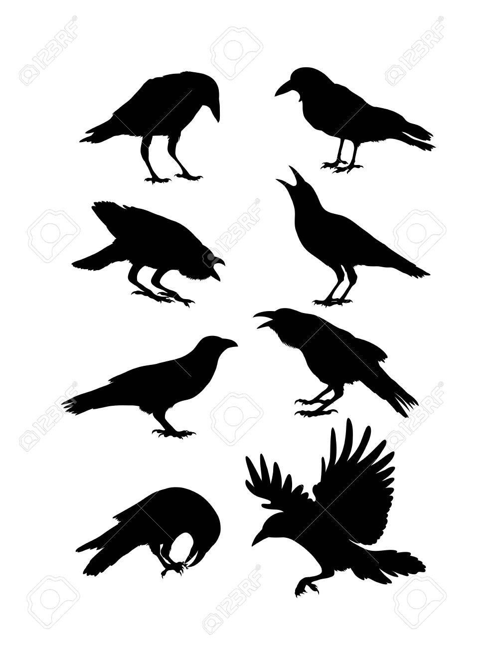 Black Crow Silhouettes Art Design Crow Silhouette Crow Painting Crow Art