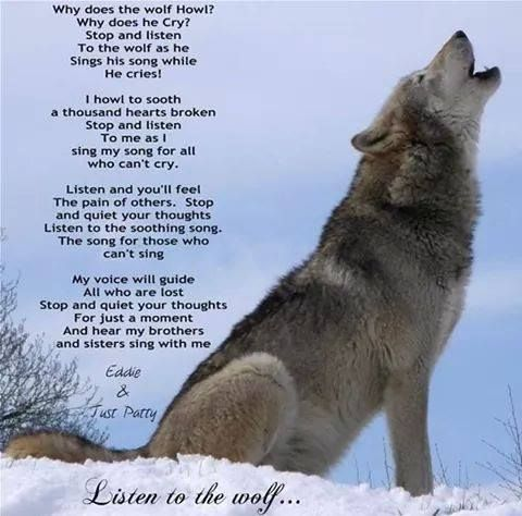 Why does the  wolf howl, why does he cry